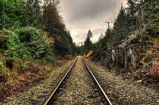 On Track by Shane Dickeson