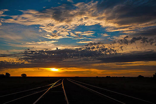 On Track by Shirley Heier