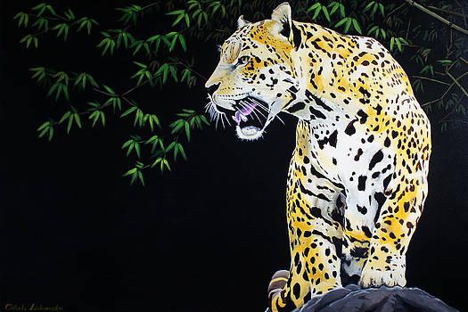 Onca and Bamboo by Chikako Hashimoto Lichnowsky