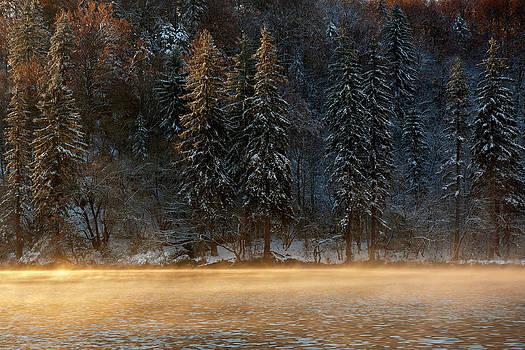 One by Miroslav  Turkalj