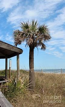 One Palm Tree by Joanne Askew