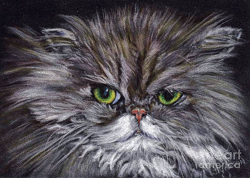 One P.O.'ed Persian by Jan Gibson