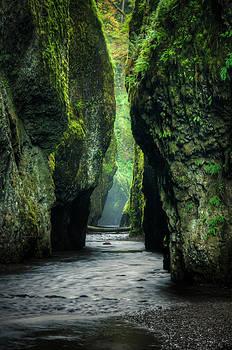 Oneonta Gorge by Brian Bonham