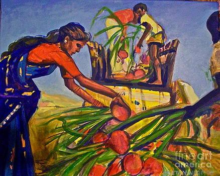Onion Farmers by Linda Zolten Wood