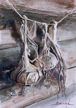 Onions in Granpa's shed by Bakhtiar Umataliev