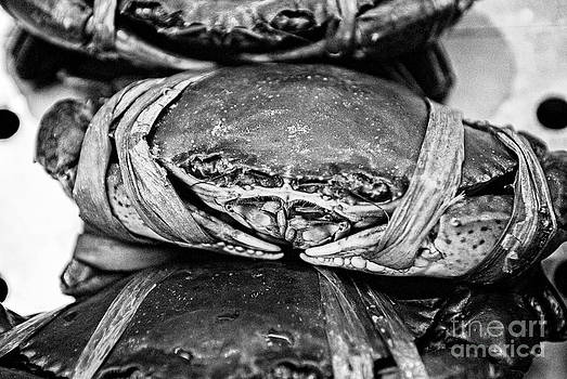 Dean Harte - Ooh Crab - Black and White Version