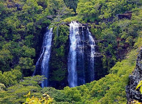 Opeakaa Falls by Robert Pennix