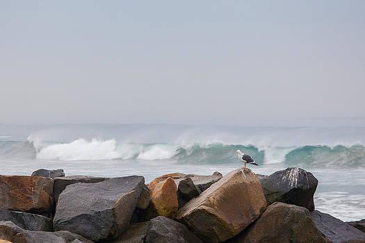 Open Break by Matthew Riccio