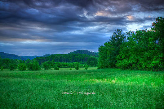 Open Pasture by Paul Herrmann