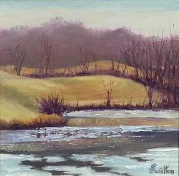 Open Water by Judy Fisher Walton