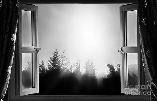 Simon Bratt Photography LRPS - Open window at night BW