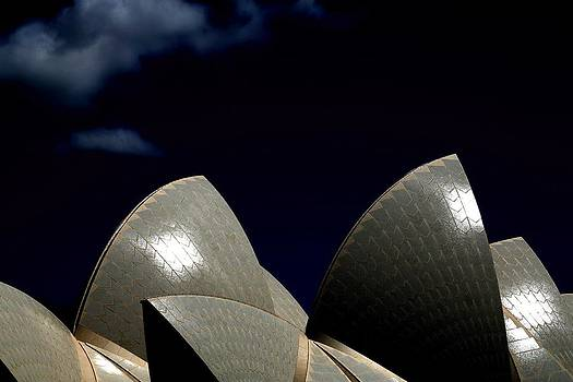 Opera House Sails by Belinda Powell