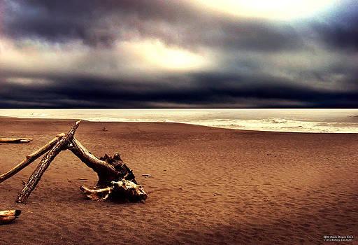 Ophir Beach Oregon by Rafael Escalios