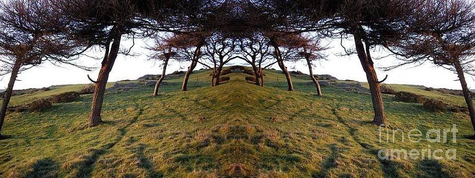 Malcolm Suttle - Opposites
