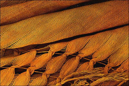 Liz  Alderdice - Orange and Gold