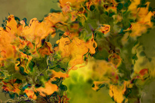 Peggy Collins - Orange and Green Floral Abstract