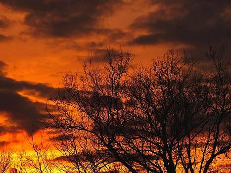 Gene Cyr - Orange and Yellow Sunset