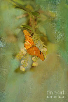 Susan Gary - Orange Butterfly on Bell Flowers