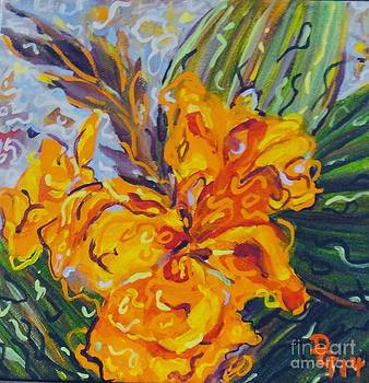 Orange Cannas by Deborah Glasgow