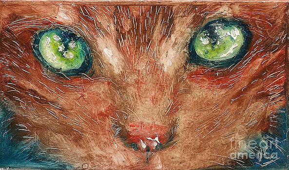Orange Cat by Donna Chaasadah