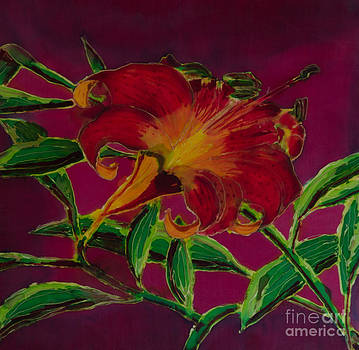 Orange Daylily by Goodson Kathy