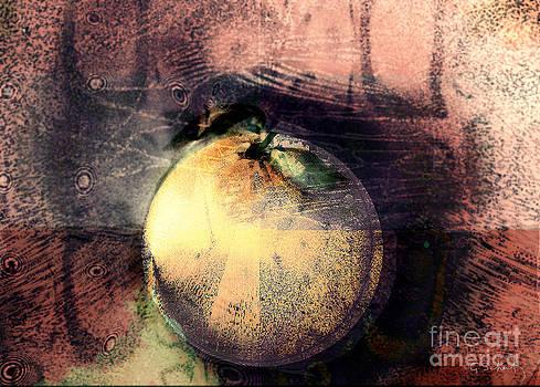 Orange by Gabrielle Schertz