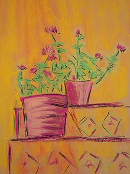 Orange Geraniums by Marcia Meade