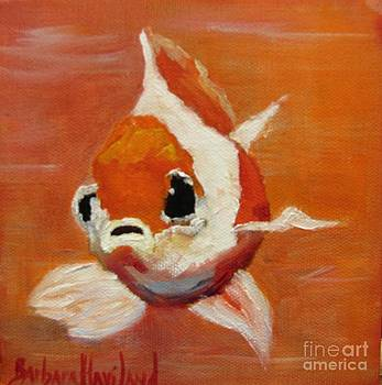Orange Goldfish by Barbara Haviland