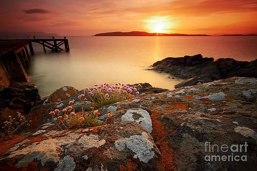 Orange Jetty Sunset  by Fiona Messenger