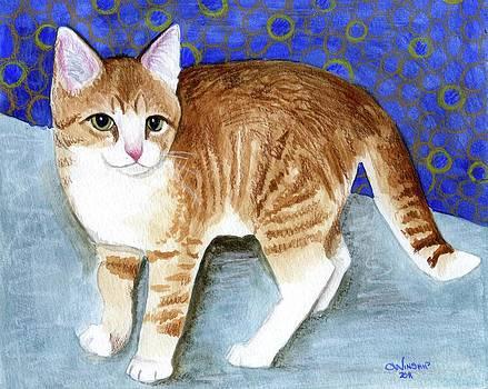 Orange Kitten 2 by Christine Winship