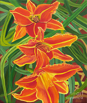 Orange Lilies by Annette M Stevenson
