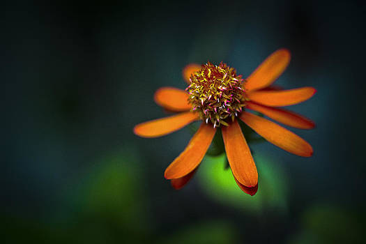 Orange Over Blue And Green by Bradley R Youngberg