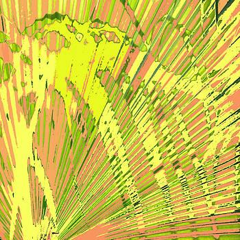 Orange Palms by Rosie Brown