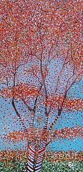 Orange Pop by Deborah Glasgow