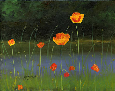 Orange Poppies by Cecilia Brendel