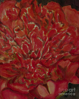 Orange Red Peony by Goodson Kathy