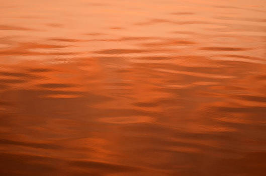 Dennis James - Orange Reflection