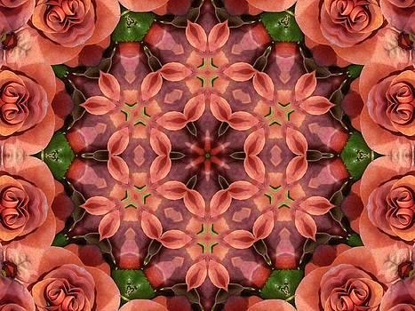 Orange Rose Mandala by Diane Lynn Hix