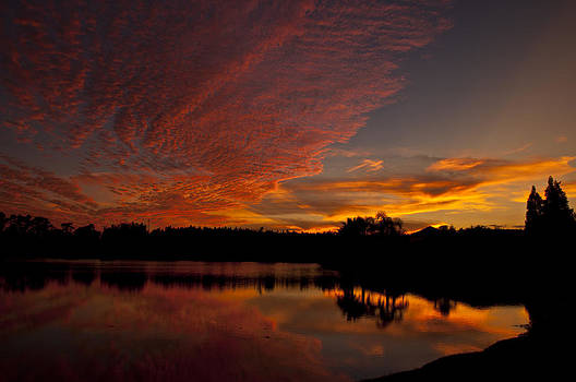 Orange Sky in Florida by Kelly D Photography