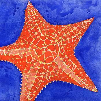 Orange Starfish by Heather Torres
