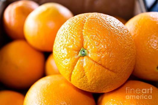 Orange Still Life by Colleen Kammerer