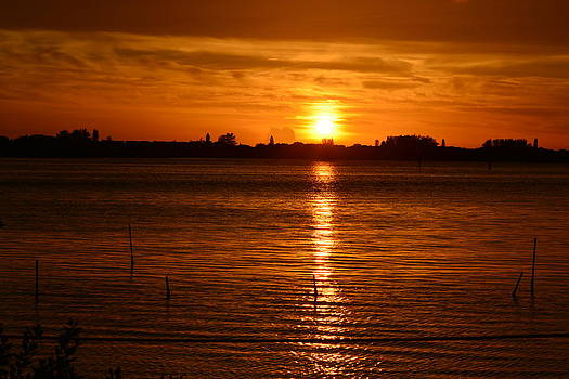 Patricia Twardzik - Orange Sun on the Horizon