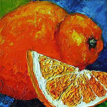 Orange Tangelo by Paris Wyatt Llanso
