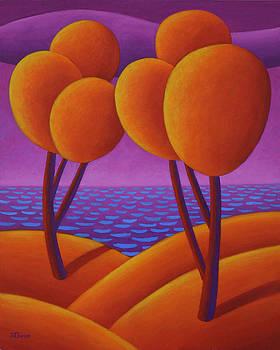 Orange Trees by Dan Steven