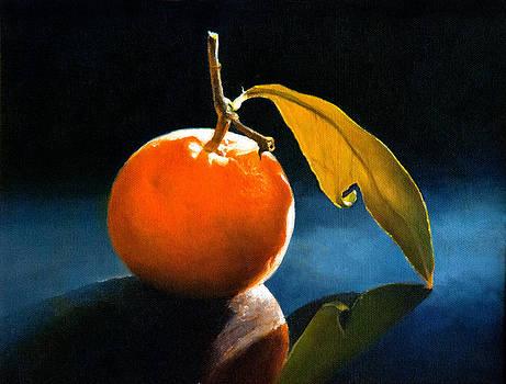 Orange with Leaf by Anthony Enyedy