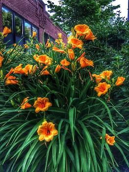 Nick Heap - Orange Ya Glad