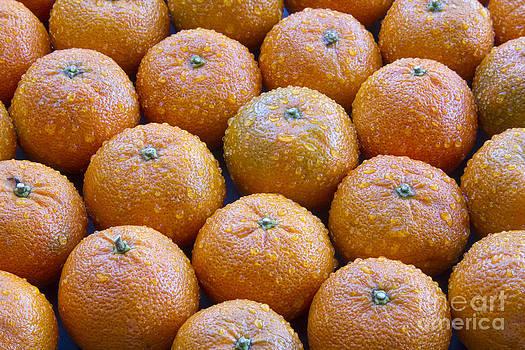 James BO  Insogna - Oranges