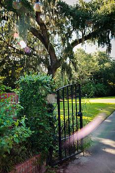 Orb Garden-Vertical by Dulce Levitz