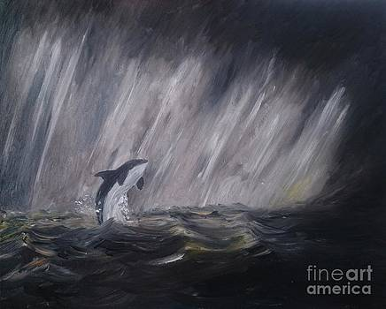 Orca by Abbie Shores