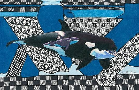 Orcas by Amy Frank